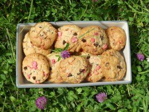 cookies_pralinesroses_chocolat._vuedessus